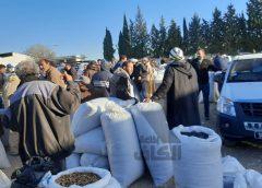 باجة: انطلاق موسم زراعة عباد الشمس رغم ما تواجهه المنظومة من صعوبات